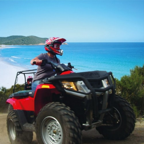 atv quad 1 or 2 hours jungle safari koh samui tours. Black Bedroom Furniture Sets. Home Design Ideas