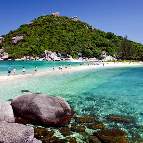 tour to koh tao