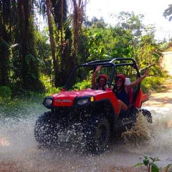 UTV Buggy Jungle Tour 4 Hours
